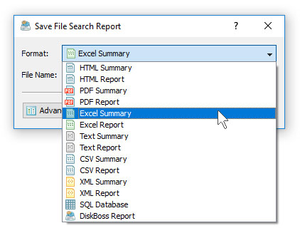 DiskBoss File Search Save Excel Report