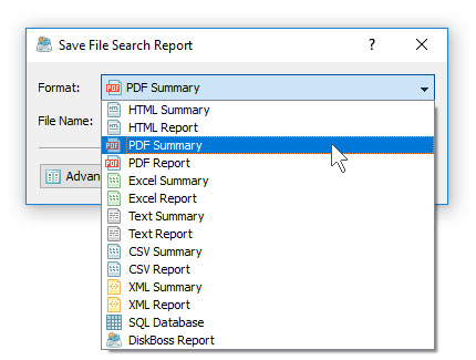 DiskBoss File Search Save PDF Report