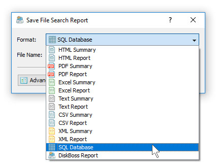 DiskBoss File Search Save SQL Database Report