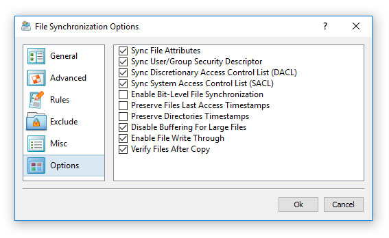 File Synchronization Options
