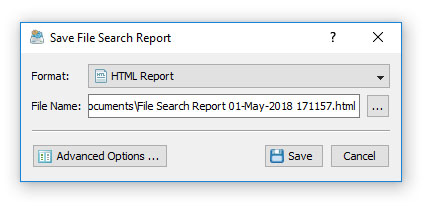 DiskBoss Save File Search Report